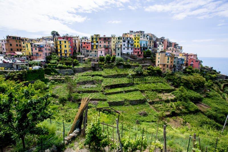 Χωριό Terre Cinque με τα ζωηρόχρωμα σπίτια σε έναν λόφο με τους terraced τομείς χλόης στοκ φωτογραφία με δικαίωμα ελεύθερης χρήσης