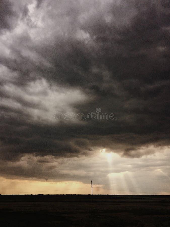 Χύνοντας βροχή και σκοτεινά σύννεφα πέρα από το λιβάδι κίτρινο στοκ εικόνες
