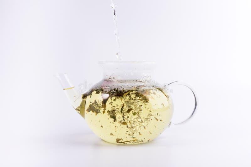 Χύνοντας ζεστό νερό teapot γυαλιού με το βοτανικό τσάι, που απομονώνεται στο λευκό στοκ εικόνες