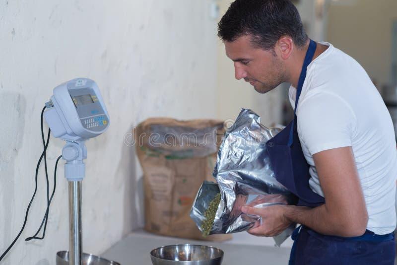 Χύνοντας σιτάρια ζυθοποιών κινηματογραφήσεων σε πρώτο πλάνο στο εργοστάσιο ζυθοποιείων στοκ φωτογραφία
