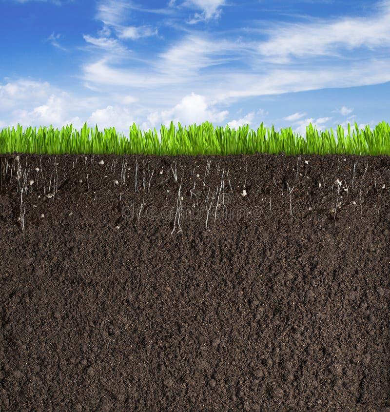 Χώμα ή τμήμα ρύπου με τη χλόη κάτω από τον ουρανό όπως ελεύθερη απεικόνιση δικαιώματος