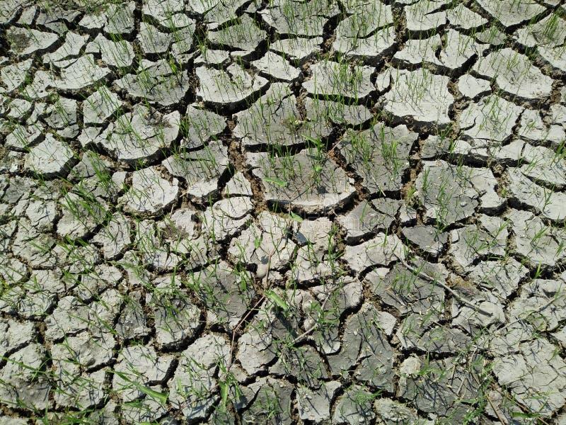 Χώμα αργίλου στοκ φωτογραφία