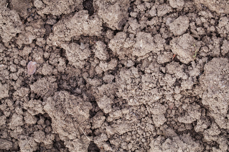 Χώμα κήπων αργίλου στοκ εικόνες