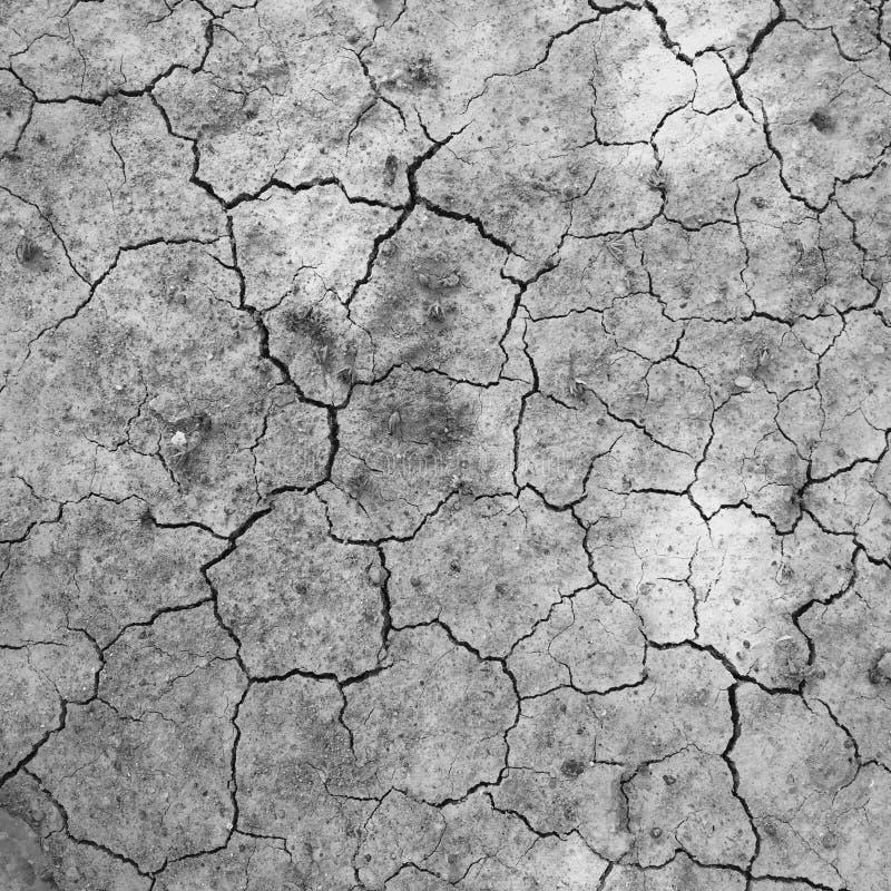 Χώμα ξηρό και ρωγμή στοκ εικόνες