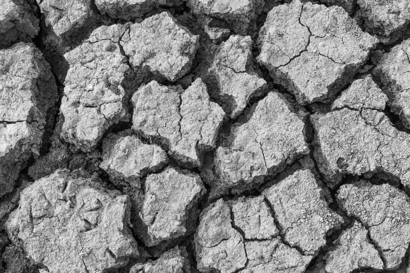 Χώμα που ραγίζεται στοκ εικόνα