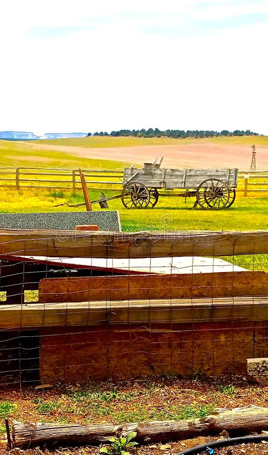 Χώρα αγροκτημάτων βισώνων στοκ φωτογραφία με δικαίωμα ελεύθερης χρήσης