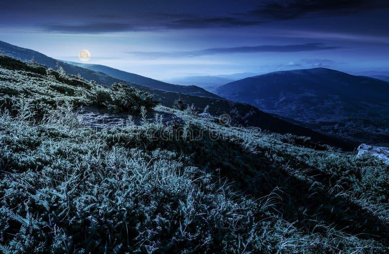 Χλοώδης βουνοπλαγιά στα Καρπάθια βουνά τη νύχτα στοκ εικόνες