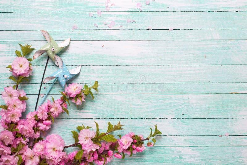 Χλωμιάστε - ρόδινα λουλούδια αμυγδάλων και διακοσμητικοί ανεμόμυλοι στο τυρκουάζ στοκ φωτογραφία με δικαίωμα ελεύθερης χρήσης