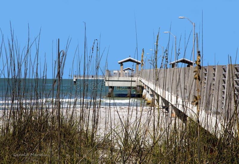 Χλόη αμμόλοφων και αποβάθρα αλιείας. Στοκ Φωτογραφία