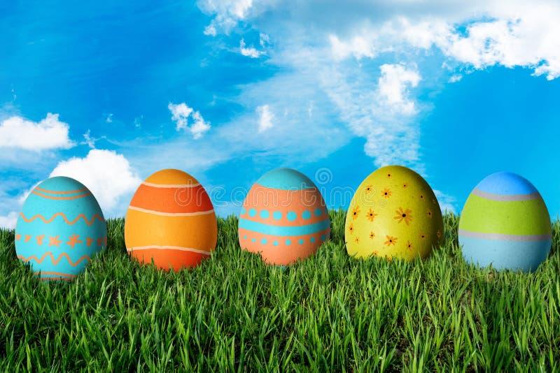 χλόη αυγών Πάσχας πράσινη στοκ φωτογραφία