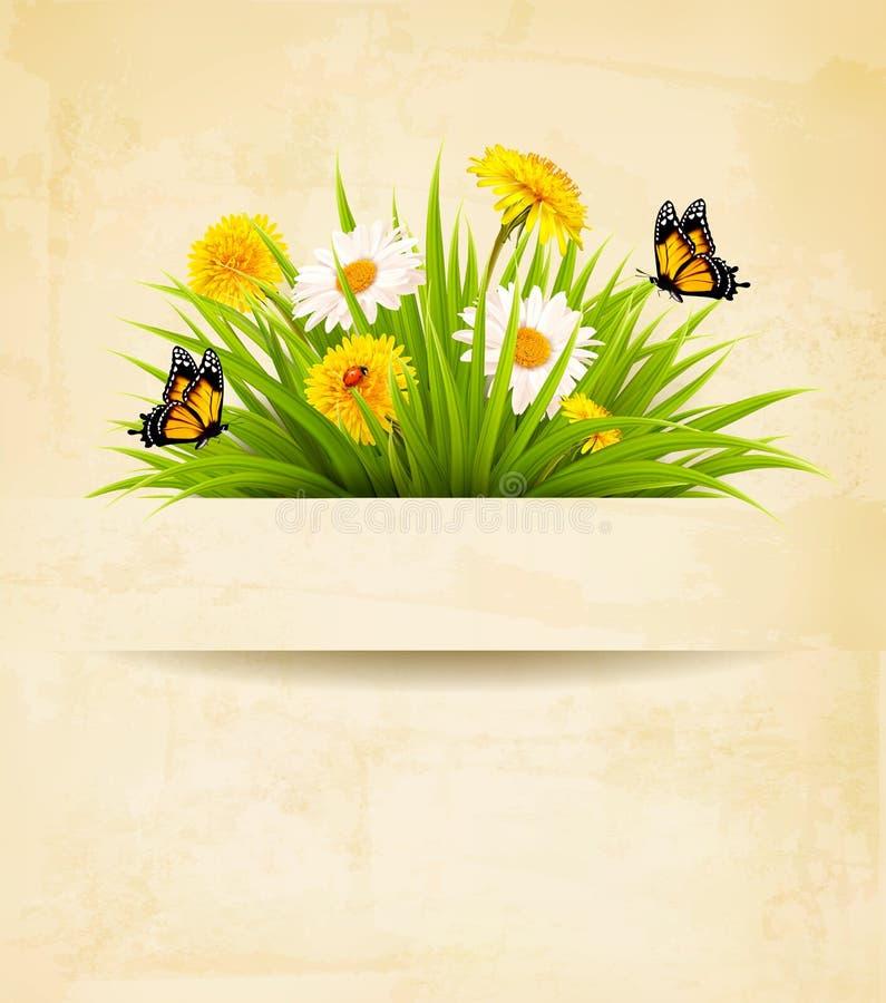 Χλόη με τα λουλούδια στο παλαιό υπόβαθρο εγγράφου ελεύθερη απεικόνιση δικαιώματος