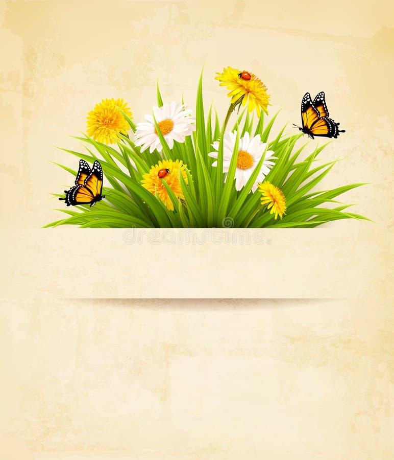 Χλόη με τα λουλούδια στο παλαιό υπόβαθρο εγγράφου απεικόνιση αποθεμάτων