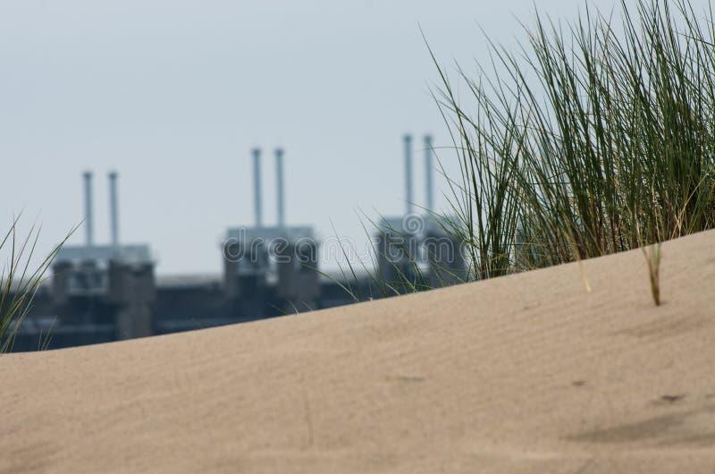 Χλόη σε έναν αμμόλοφο κοντά στις του δέλτα εργασίες στοκ εικόνες