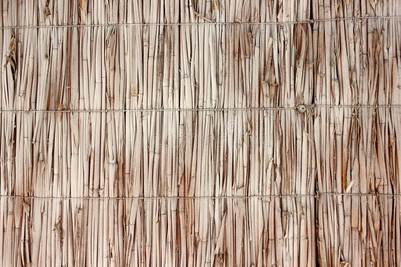 Ψάθινος τοίχος των καλάμων στοκ εικόνες με δικαίωμα ελεύθερης χρήσης