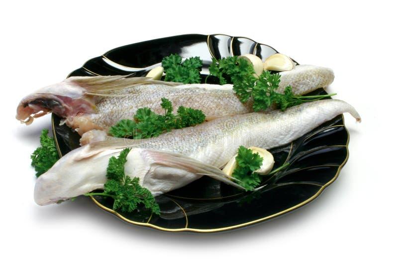 ψάρια ακατέργαστα στοκ εικόνες