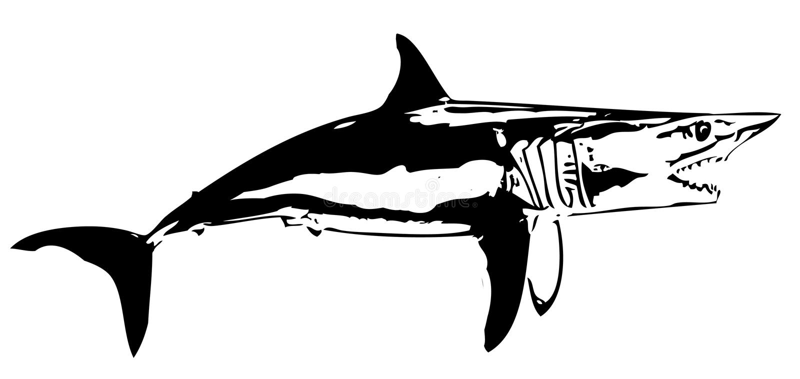 Ψάρια Ι καρχαριών της Mako διάνυσμα απεικόνιση αποθεμάτων