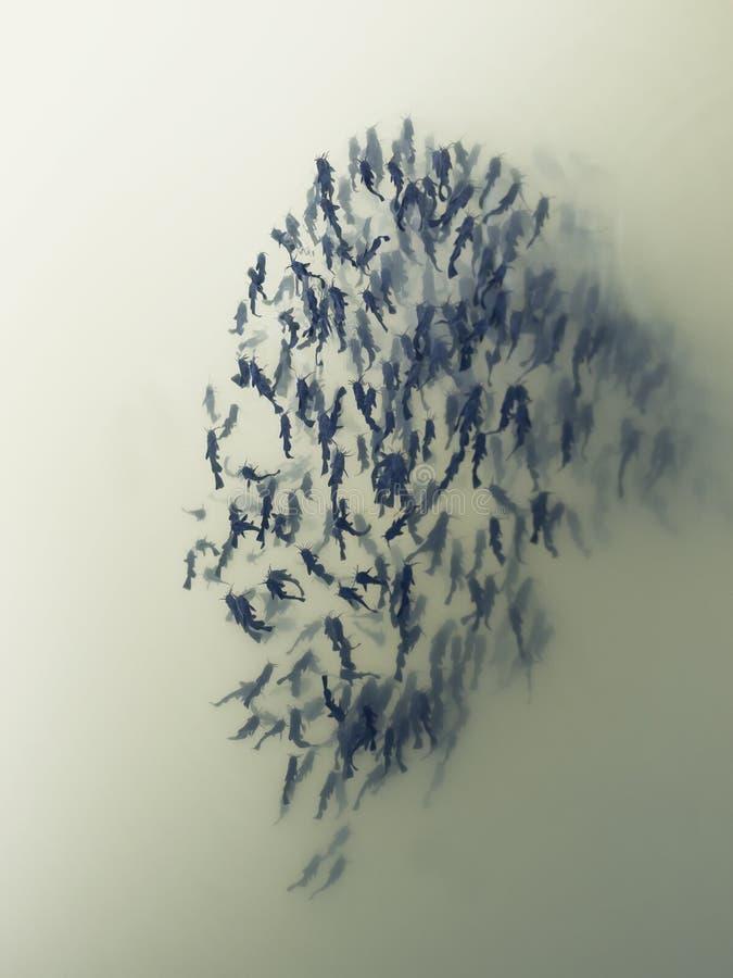 Ψάρια κοπαδιών στοκ φωτογραφία