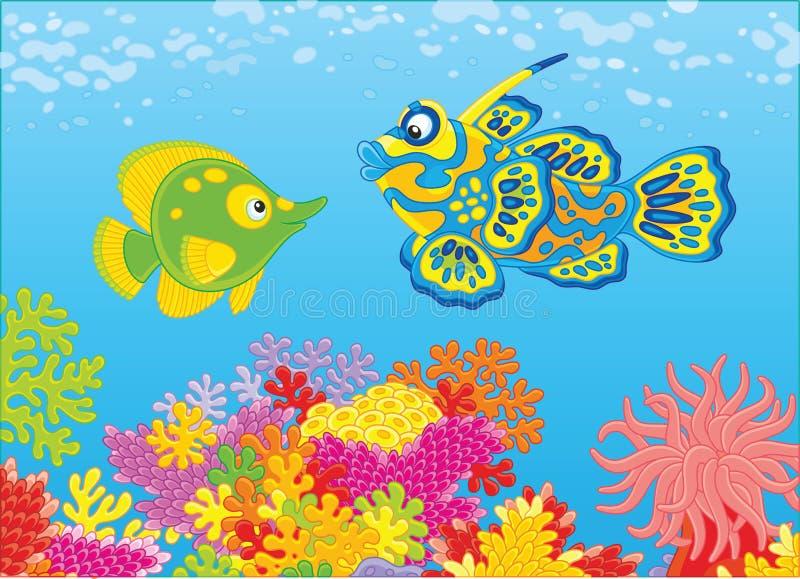 Ψάρια πεταλούδων και ψάρια κινεζικής γλώσσας απεικόνιση αποθεμάτων
