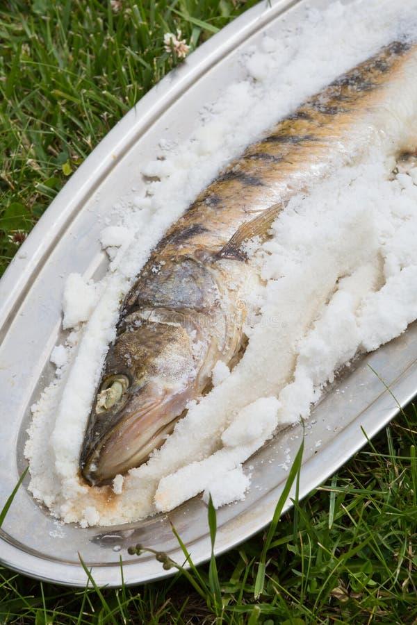 Ψάρια που ψήνονται στο άλας στοκ εικόνες με δικαίωμα ελεύθερης χρήσης