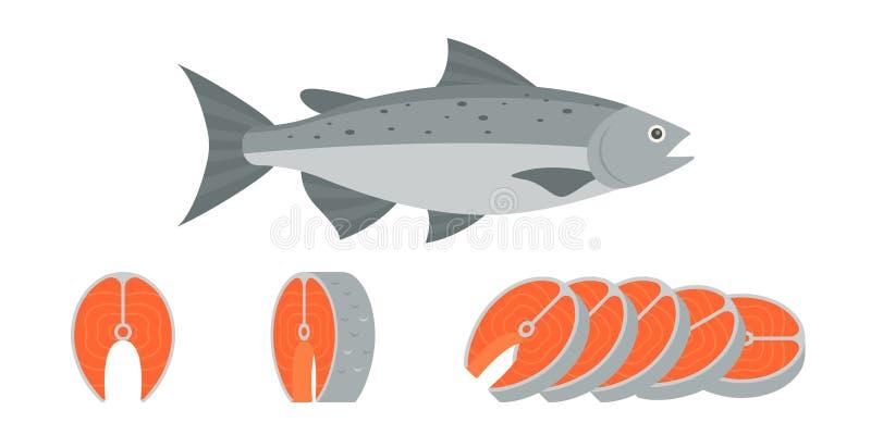 Ψάρια σολομών και τεμαχισμένος της μπριζόλας λωρίδων σολομών διανυσματική απεικόνιση