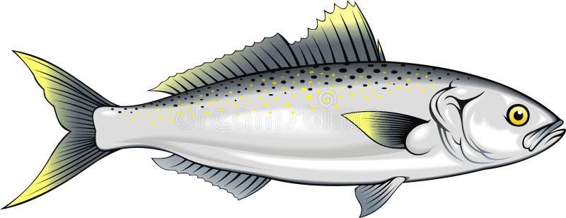 Ψάρια σολομών διανυσματική απεικόνιση