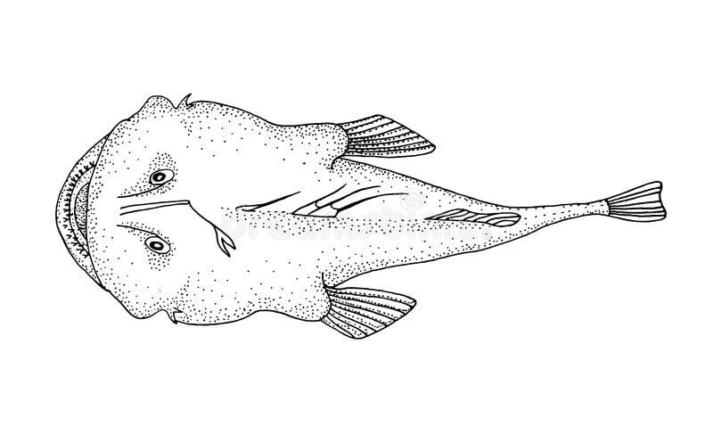 Ψάρια ψαράδων Συρμένη χέρι ρεαλιστική μαύρη απεικόνιση διανυσματική απεικόνιση