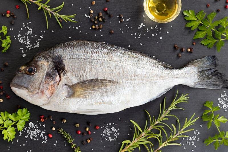 Ψάρια Dorada με τα χορτάρια και καρυκεύματα σε ένα σκοτεινό υπόβαθρο στοκ εικόνα με δικαίωμα ελεύθερης χρήσης