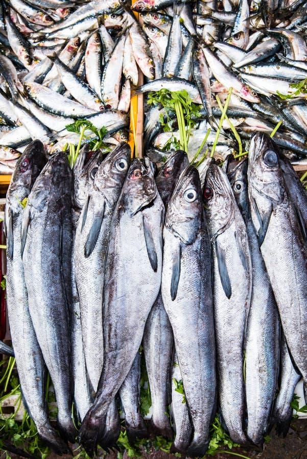 Ψάρια Freesh στα κλουβιά στην τοπική αγορά τροφίμων στην Αφρική στοκ εικόνα με δικαίωμα ελεύθερης χρήσης