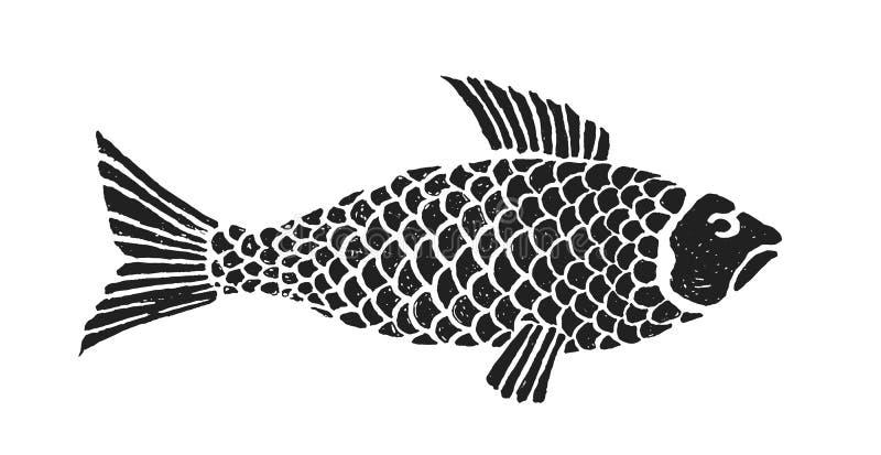 1 ψάρι ελεύθερη απεικόνιση δικαιώματος