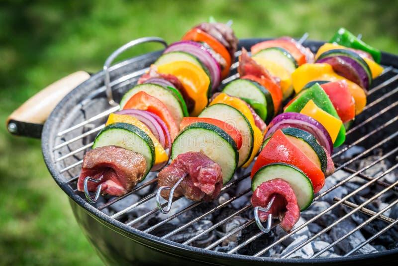 Ψήνοντας φρέσκα κόκκινο κρέας και λαχανικά με τα καρυκεύματα στον κήπο στοκ εικόνα