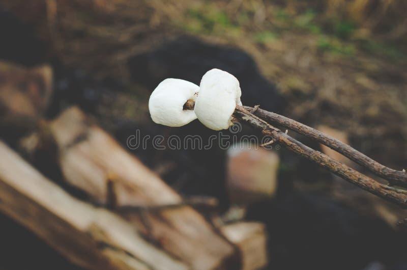 Ψήνοντας marshmallows σε μια φωτιά σε ένα αγρόκτημα στοκ φωτογραφία με δικαίωμα ελεύθερης χρήσης