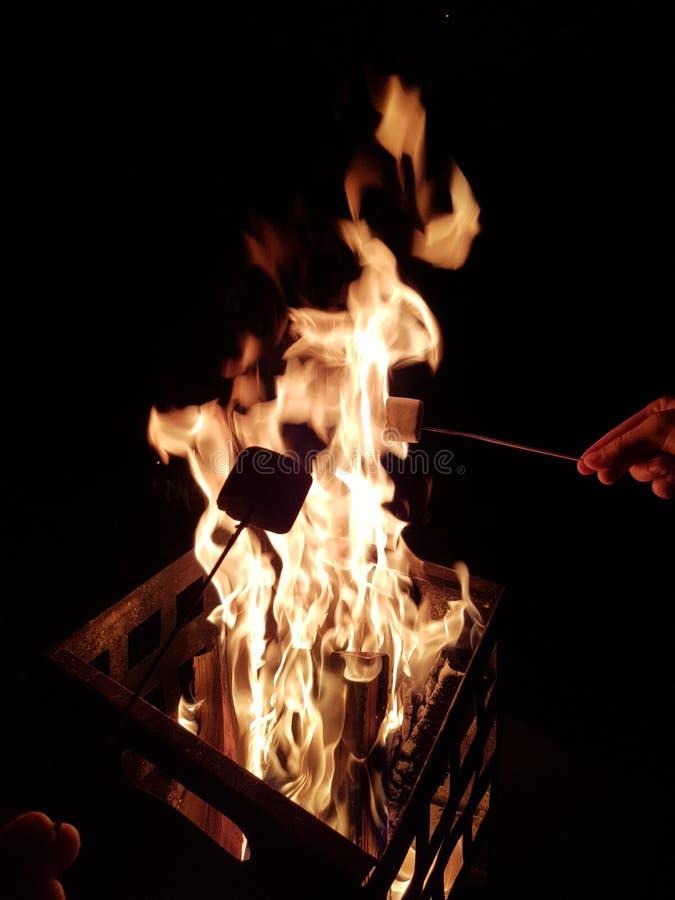 Ψήνοντας marshmallows στην πυρά προσκόπων στο κοίλωμα πυρκαγιάς χάλυβα στοκ εικόνες με δικαίωμα ελεύθερης χρήσης