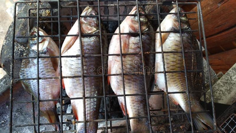 ψήσιμο στη σχάρα των ψαριών, ψημένα στη σχάρα ψάρια στοκ εικόνα