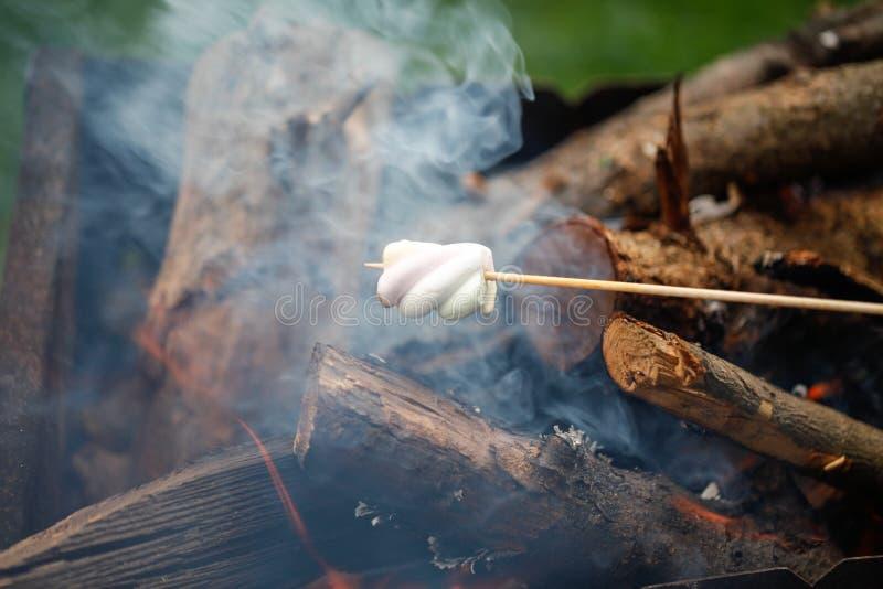Ψήσιμο στη σχάρα marshmallows στην πυρκαγιά στοκ εικόνες με δικαίωμα ελεύθερης χρήσης