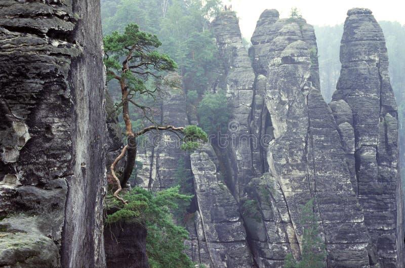 ψαμμίτης βράχων Στοκ Φωτογραφία