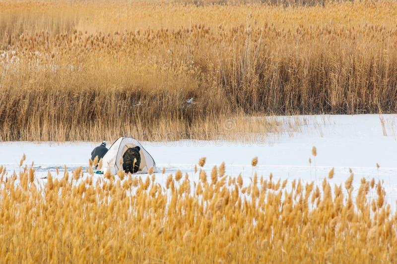 ψαράδες Χειμώνας Σκηνή για τη χειμερινή αλιεία Κάλαμοι σε ένα παγωμένο Λα στοκ εικόνα με δικαίωμα ελεύθερης χρήσης