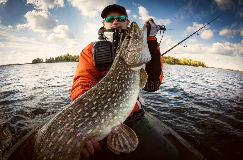 Ψαράς και μεγάλοι λούτσοι τροπαίων στοκ εικόνες