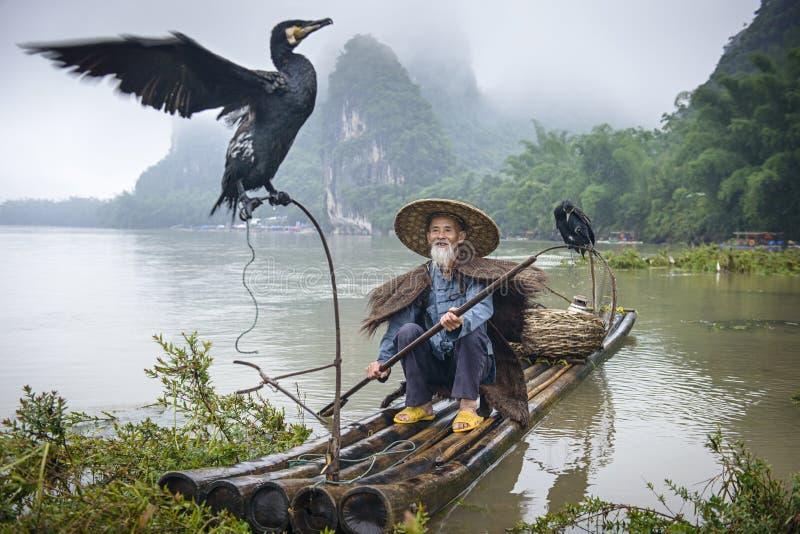 Ψαράς κορμοράνων στοκ φωτογραφία