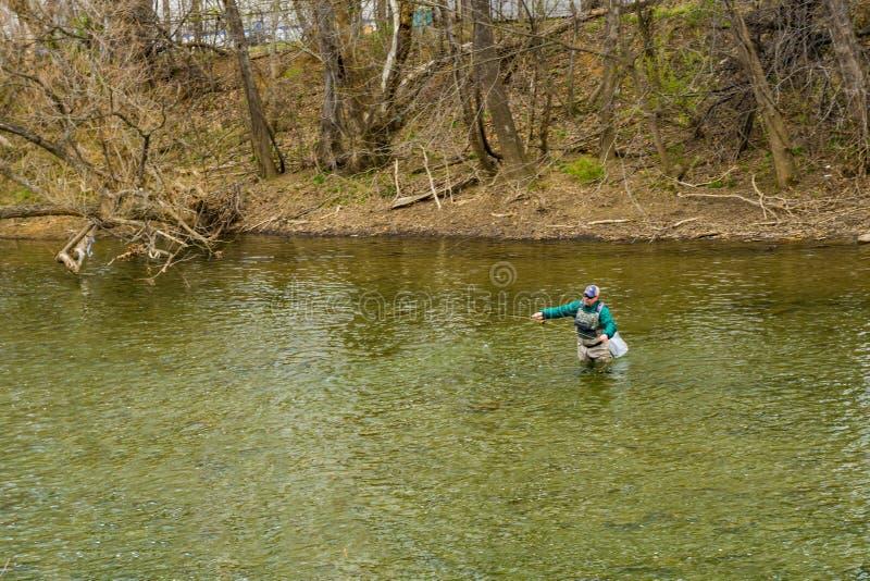 Ψαράς που πετά μια τεχνητή μύγα για την πέστροφα στον ποταμό Roanoke, Βιρτζίνια, ΗΠΑ στοκ εικόνες
