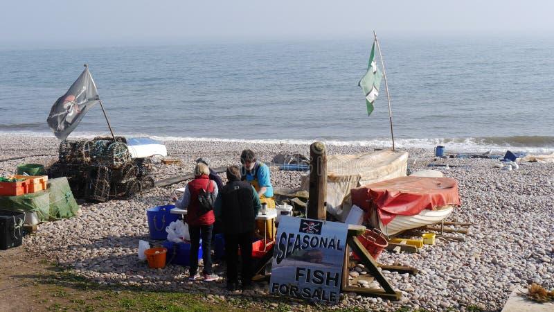 Ψαράς που πωλεί τη σύλληψή του σε μια παραλία στην Αγγλία στοκ εικόνες με δικαίωμα ελεύθερης χρήσης
