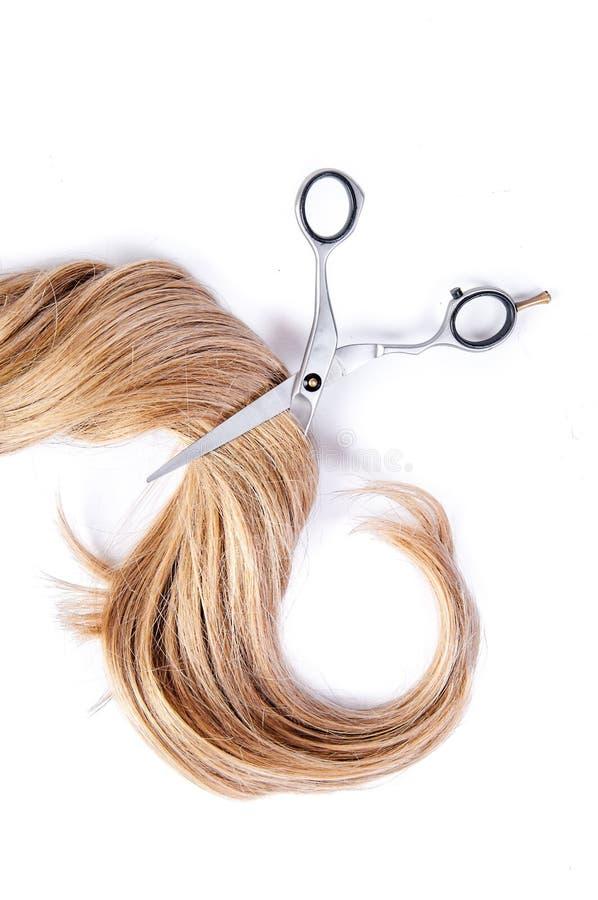 Ψαλίδι κομμωτή με το σκέλος των ξανθών μαλλιών στο άσπρο υπόβαθρο στοκ εικόνες με δικαίωμα ελεύθερης χρήσης