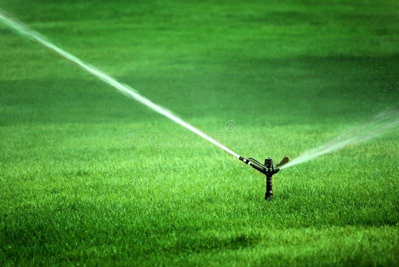 Ψεκάζοντας νερό ψεκαστήρων στην πολύβλαστη πράσινη χλόη στοκ φωτογραφίες με δικαίωμα ελεύθερης χρήσης