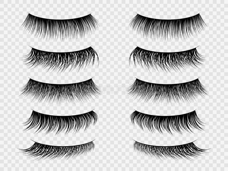 Ψεύτικα μαστίγια Τα ρεαλιστικά eyelashes, επινοούν το παχύ μαστίγιο στην ιδιαίτερη προσοχή Καθιερώνον τη μόδα σαλόνι ομορφιάς γυν διανυσματική απεικόνιση