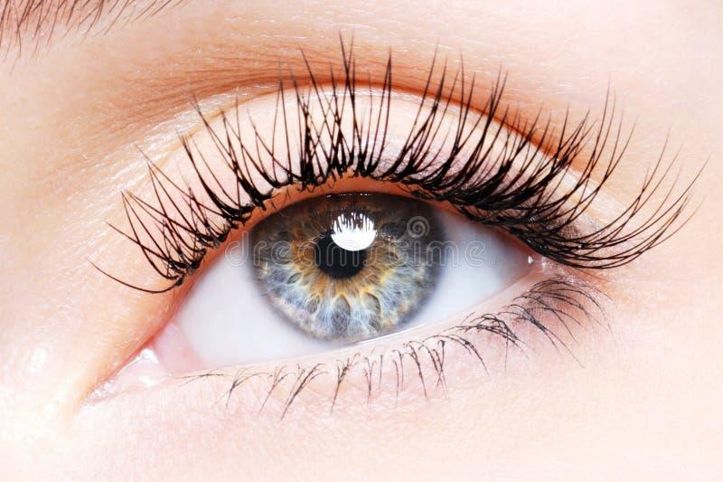 ψεύτικη γυναίκα ματιών μπο&up στοκ φωτογραφία με δικαίωμα ελεύθερης χρήσης