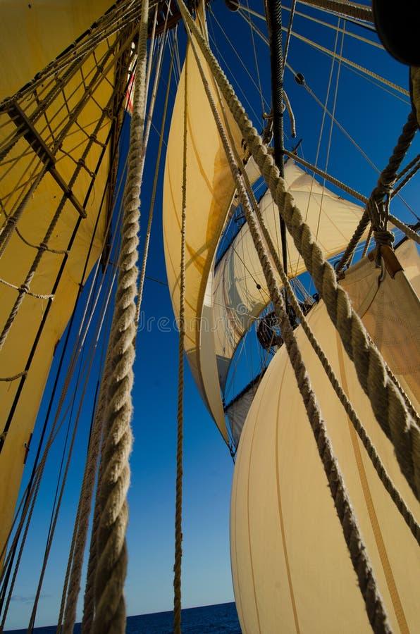Ψηλοί ιστός και πανιά σκαφών στοκ εικόνα