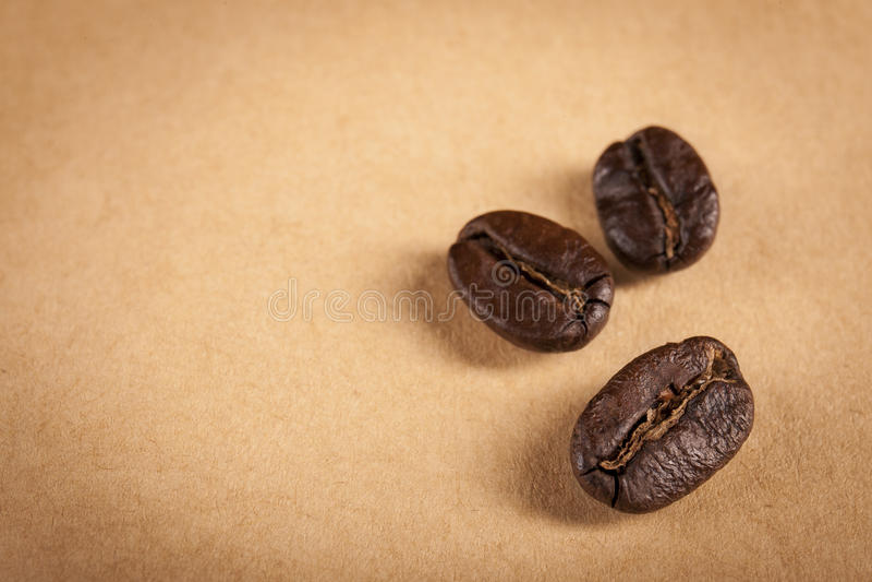 Ψημένα η Γουατεμάλα φασόλια καφέ στοκ φωτογραφίες με δικαίωμα ελεύθερης χρήσης