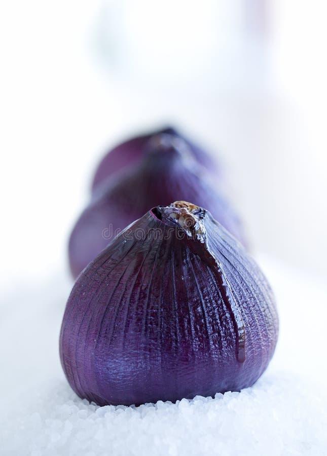 Ψημένα κρεμμύδια στοκ εικόνες με δικαίωμα ελεύθερης χρήσης