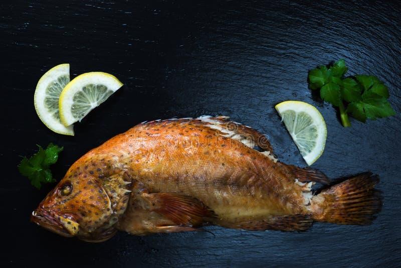Ψημένα κόκκινα grouper κοραλλιών ψάρια, λεμόνι, σέλινο στη σκοτεινή υγρή πέτρα στοκ εικόνα με δικαίωμα ελεύθερης χρήσης