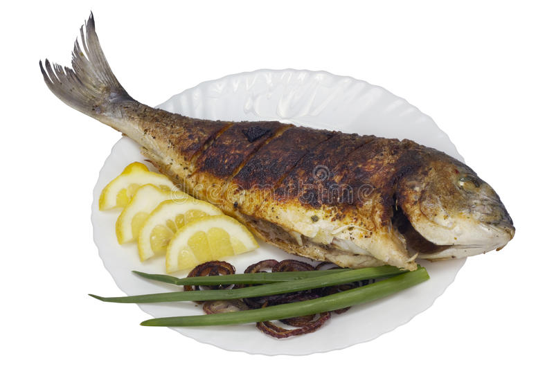 Ψημένα στη σχάρα grouper θάλασσας ψάρια στοκ φωτογραφίες με δικαίωμα ελεύθερης χρήσης