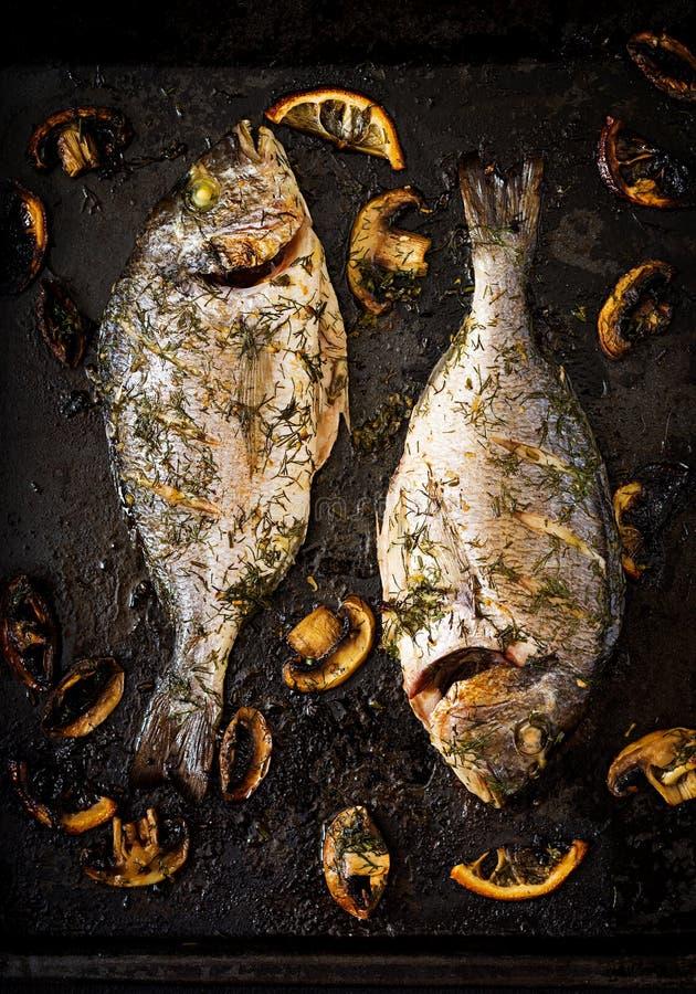 Ψημένα ψάρια dorado στη σάλτσα άνηθου σκόρδου με τα μανιτάρια και το λεμόνι στοκ φωτογραφία με δικαίωμα ελεύθερης χρήσης